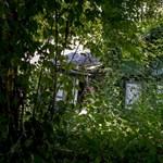 Varázslatos hely, de ingatlanjogi nonszensz az egykori zsidó üdülőtelep Csillebércen
