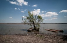 Településenként 100 millió forinttal indul a szabad strandok felújítása a Tisza-tónál