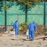 Mellbevágó képek a városligeti azbesztmentesítésről