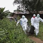 Újra fellángolt, nagyvárosra is átterjedhet az ebolajárváy