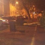 Vihar: négy napig voltak áram nélkül az Őrségben