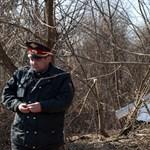 Bizarr színjáték Lengyelországban: milyen kemény a nyírfa?