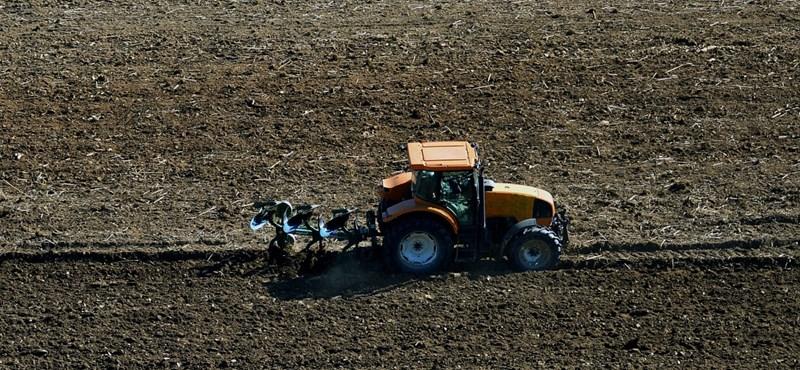 Kétszázmilliót ad a kormány a földárverések reklámozására