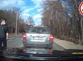 Viperával akart emberkedni a lengyel sofőr, de nagyon beégett