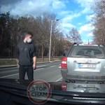Viperával akart emberkedni a lengyel sofőr, de nagyon beégett – videó