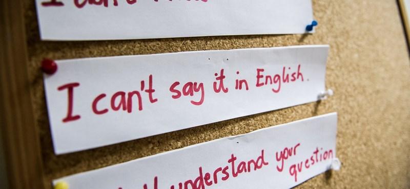 Amerikai kutatók kiszámolták, mekkora helyet foglal el az agyban a nyelvismeret