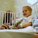 Megkapta az életmentő infúziót Zente