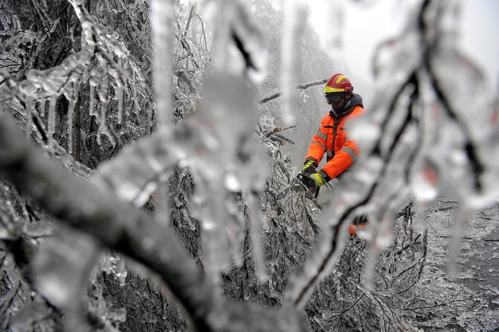 mti. ónos eső, jegesedés, tél 2014, 2014.12.02. Lezárták a Dobogókőre vezető utat, Pilisszentkereszt, Katasztrófavédelmi szakember dolgozik a jég súlyától az útra dőlt fák eltávolításán a Dobogókőre vezető úton 2014. december 2-án. A katasztrófavédelem és