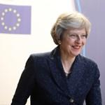 Pártjának keményvonalas Brexit-párti tagjai váltanák le Theresa Mayt