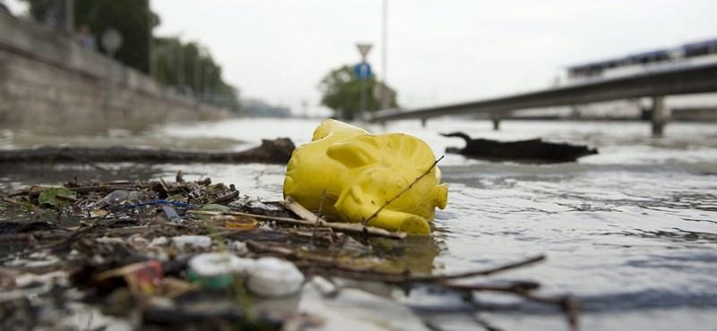 Elképesztően szennyezett a Duna