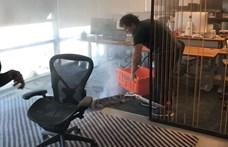 Lángra kapott elektromos roller miatt kiürítették a Dropbox székházát