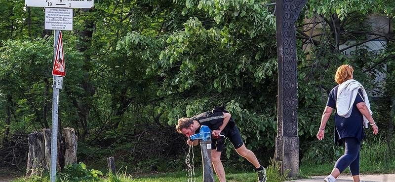 Elkészült az új futópálya, lehet menni edzeni a Normafára