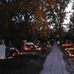 Futópályát jelölnek ki a Fiumei úti sírkertben