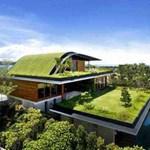 Gyönyörű házak, zöldtetővel