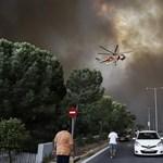 Szándékos gyújtogatás okozhatta a pusztító görög erdőtüzet