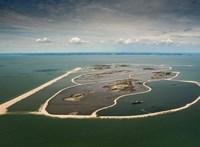 Működik a recept: mesterséges szigeteket hoztak létre, sikerült visszacsalogatni az állatokat