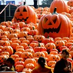 Öngyilkos merénylőnek öltözött Halloweenre egy férfi, letartóztatták