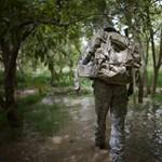 Jövőre már transzneműek is harcolhatnak az amerikai hadseregben