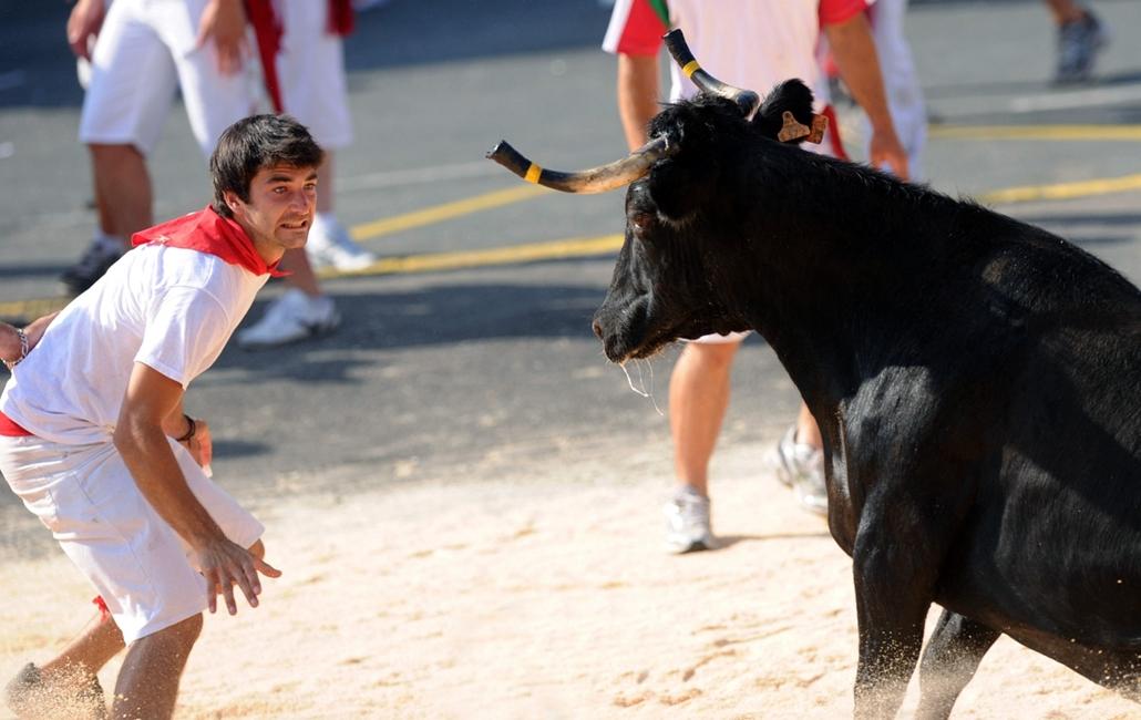 bika, bikaviadal, bayonne fesztivál, Franciaország, 2013. július 25.