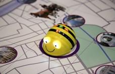 Robotméhvel tanulnak programozni a bécsi kisiskolások