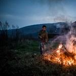 A forradalomtól a békés menetig - a hét képei - Nagyítás-fotógaléria