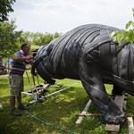 Használt gumiabroncsból készít életnagyságú állatszobrokat az újudvari kertész – fotók