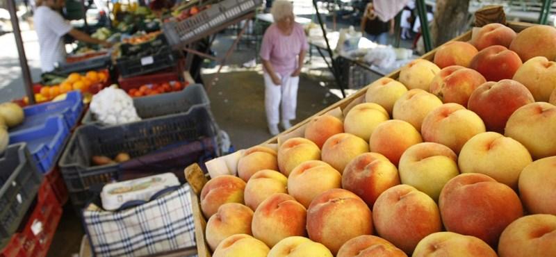 Túl sokba kerülne, hogy olcsóbb legyen a magyar gyümölcs