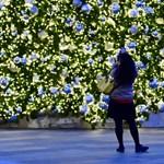 A tanárok szóba sem hozhatják a karácsonyt a német iskolában