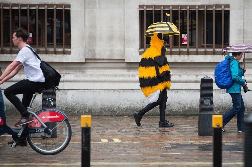 afp.15.05.14. - London, Egyesült Királyság: méhecske London belvárosának egyik utcáján - 7képei