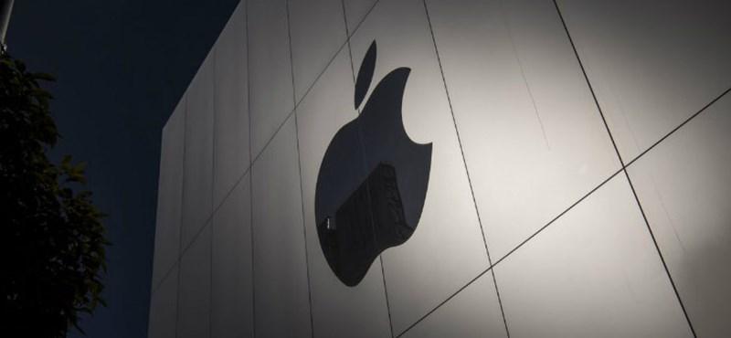 2-5 elvesztegetett perc miatt perli be egy amerikai felhasználó az Apple-t
