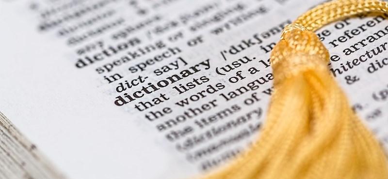 Megbízható szótárat kerestek? Ezzel az ingyenes appal beszélgetéseket is fordíthattok