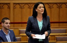 Hivatali visszaélés miatt nyomoz az ügyészség Demeter Márta ügyében