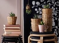 Az IKEA-nál egy székre is úgy néznek, mint erőforrásbankra