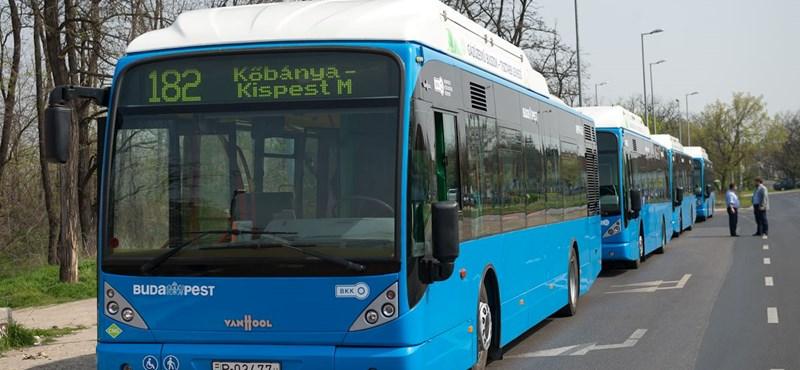 Átadták az első gázos buszokat Budapesten – fotó