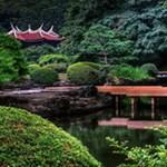 Csökken a japán turizmus