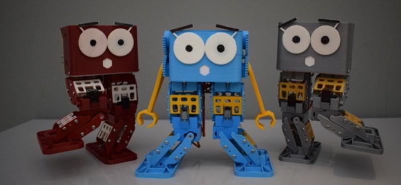 Van gyereke? Ez a robot 34 ezer forintból a jövő szakmájához segítheti