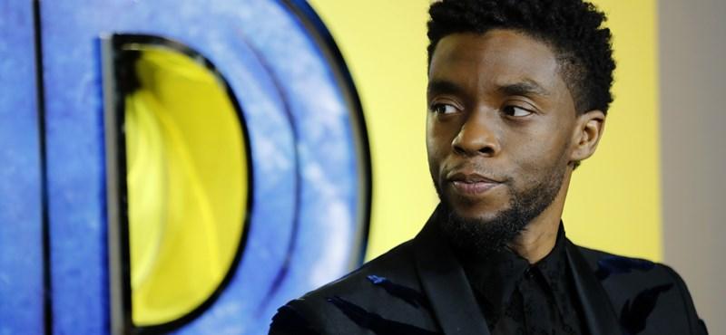 A Fekete Párducot alakító színész szerint Hollywood még mindig rasszista