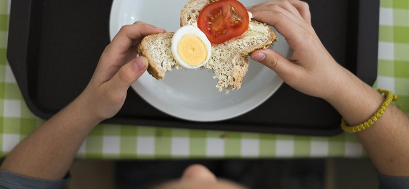 Meglepő dolog derült ki az iskolai menzákról: mégsem jó, ha sótlan az étel?