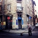 Budapest utcafotó: tacskós november a Nap utcában