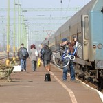 Halálos gázolás történt az esztergomi vasútvonalon