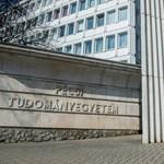 A Pécsi Tudományegyetem rektora azt kéri: ne bántsák a külföldi hallgatókat