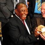 Eszközhasználó lehetett az újonnan felfedezett Homo naledi