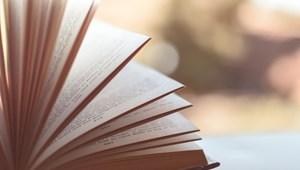 A csepeli ovikban tilos felolvasni a Meseország mindenkié című könyvből