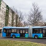 """Vasárnap több hiper kinyit: a BKK is járatja a """"szabad világ buszait"""""""