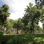 Szent István-szobor a XIII. kerületben: itt lehet az első repedés a fővárosi ellenzéki összefogáson