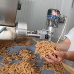 Logisztikával erősít a gyermelyi tésztagyár