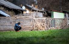 Magyar kutatás a koronavírusról: a válaszadók tizede elvesztette a munkáját