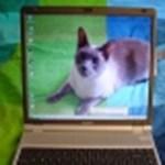 Ügyes trükk – átlátszó képernyős Macintosh