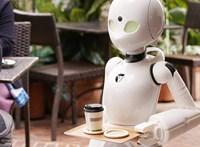 Az EU utolsó előtti helyén állunk robothasználatban