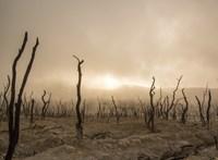 Matolcsy elmondta, hogyan harcolna a klímaváltozás ellen